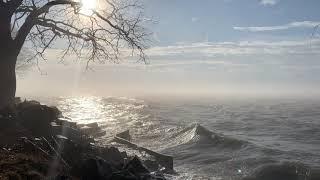 Meditation + Breathing - Rhythm of the Waves - 5min