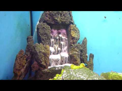 Waterfalls in aquarium funnydog tv for Aquarium waterfall decoration