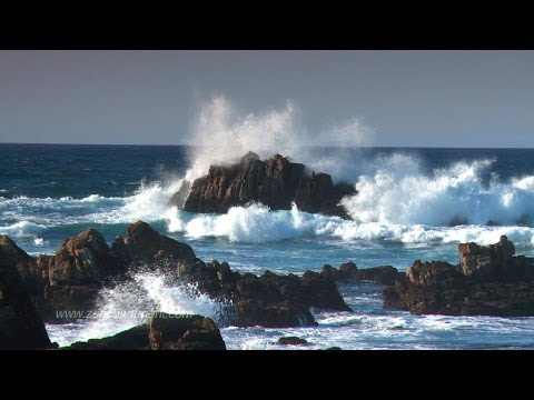 Zen Ocean Waves - Ocean Sounds Only (NO MUSIC)  Aquatic Drea