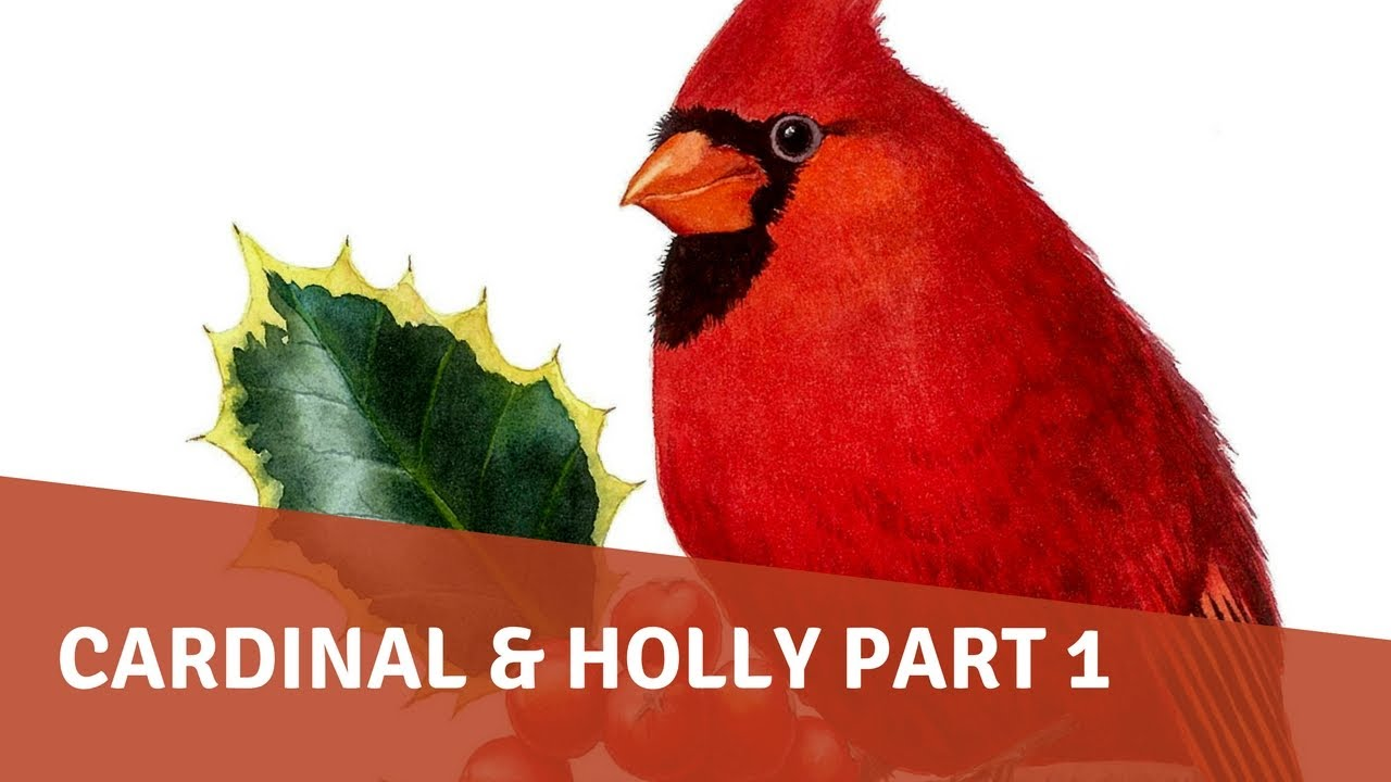 Watercolor Painting Tutorial Cardinal And Holly PART 1