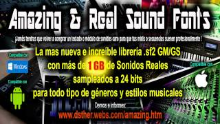 The Best Pro GM/GS Sound Font Library .Sf2