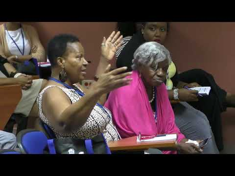 Strengthening Civil Society Engagement   Caribbean Action 2030, Day 2