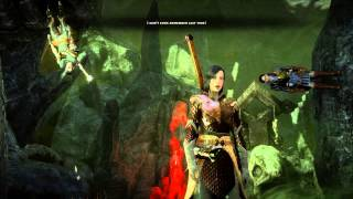 Dragon Age Inquisition: Cole and Sera freaking out in the Fade