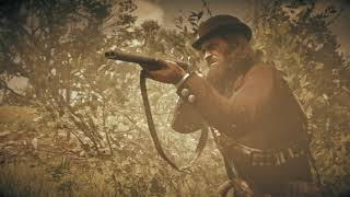 Red Dead Redemption 2_20190222222543