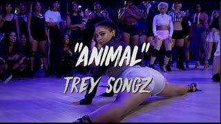 "Trey Songz - ""Animal""   Nicole Kirkland Choreography"