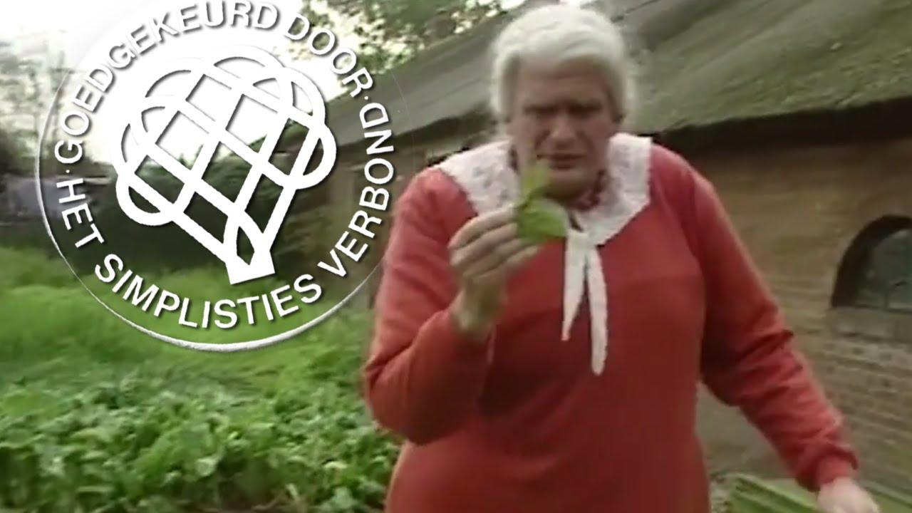 Citaten Koot En Bie : Kruidenvrouwtje van kooten en de bie youtube