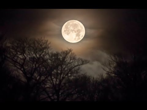 Ask Not For Whom The Moon Shines, It Shines For Thee