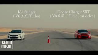 KIA Stinger V6 3.3 L TURBO vs Dodge Charger SRT  V8 6.4 L