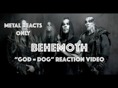 "BEHEMOTH ""God = Dog"" Reaction Video 