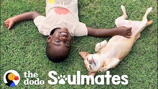 Download Little Boy Terrified Of Dogs Til He Meets This Senior Pup | The Dodo Soulmates Mp3 and Videos