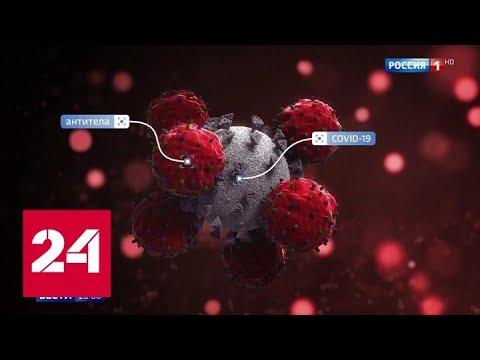 Медики не могут разгадать одну из главных загадок коронавируса - Россия 24