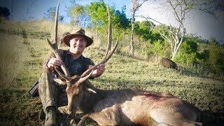 Hunting Rusa deer in New Caledonia part 20