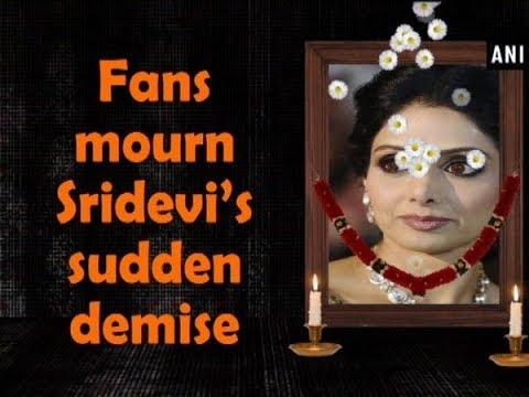 Fans mourn Sridevi's sudden demise - ANI News