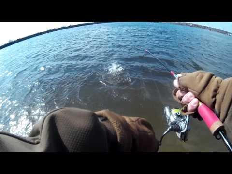 Рыбалка в Бисерово. Crazy Fish Allure 1.6