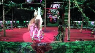 Королевский цирк Гии Эрадзе(Шоу «Пять Континентов» выдвинут на соискание премии «Мастер» в номинациях «Цирковое шоу года», «Артист..., 2015-04-29T06:26:15.000Z)