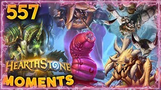 BUGS EVERYWHERE!! | Hearthstone Daily Moments Ep. 557
