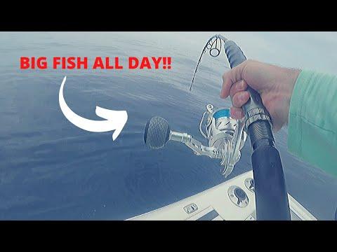 We Caught So Many Fish!!- EPIC Day- Offshore Orange Beach, AL