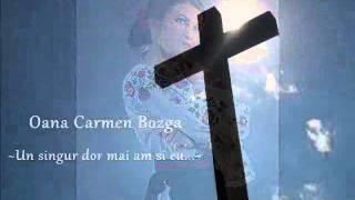 Oana Carmen Bozga - Un singur dor mai am si eu