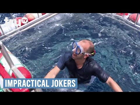 Impractical Jokers - Swimming with the Sharks (Punishment) | truTV