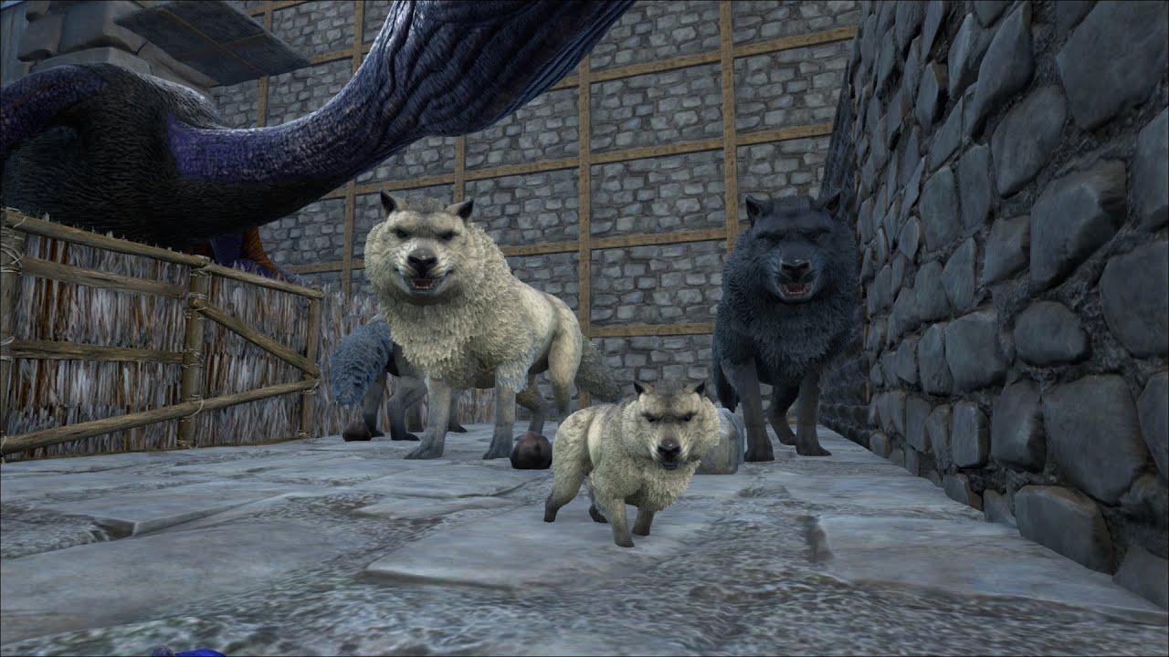 Ark Survival Evolved Singleplayer 32 Patsch220 Dire Wolf