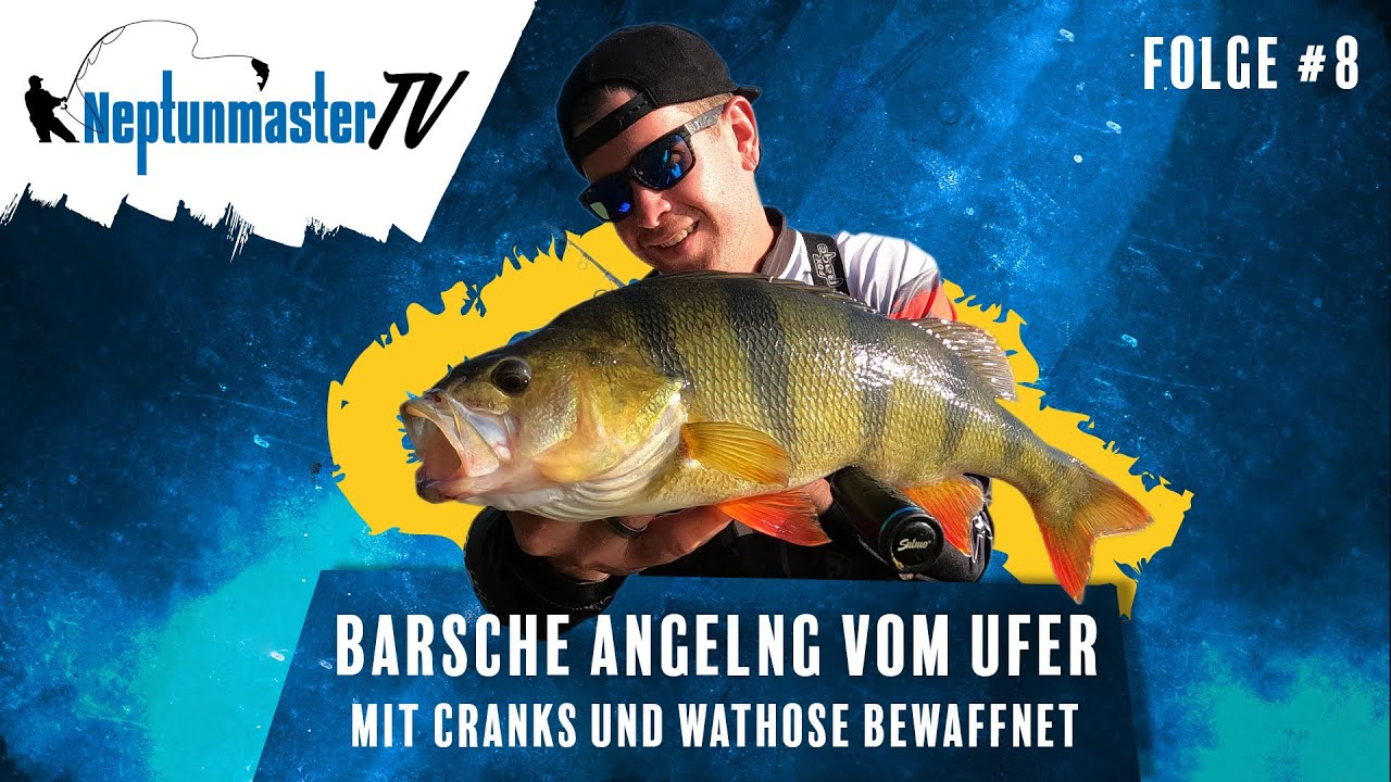 Download Barsche angeln mit Wobbler / Crankbaits vom Ufer – Vorteil vom Fischen in der Wathose #8