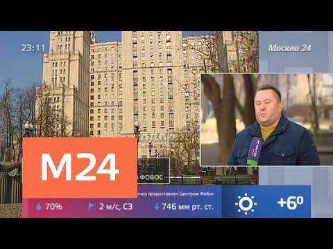 Какая погода ждет москвичей в ближайшие сутки - Москва 24