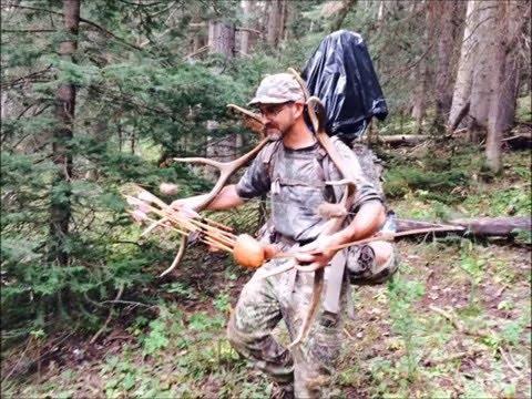 Longbow Elk Hunt 2015