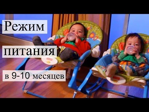 Наш режим питания в 9-10 месяцев | Tanya's Twins