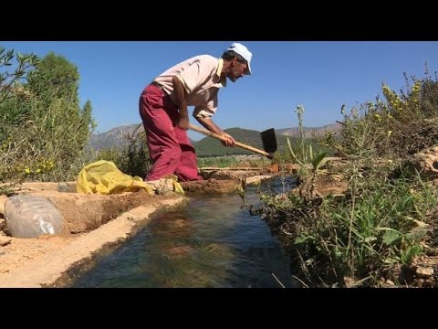 """Au Maroc, """"l'eau solaire"""" pour faire revenir les agriculteurs"""