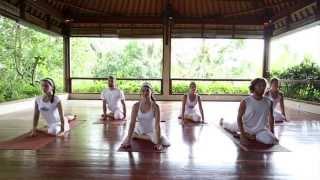 Entrainment Yoga - Chakra 2 Flow (a sample)