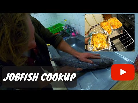 CATCH AND COOK Baked Jobfish