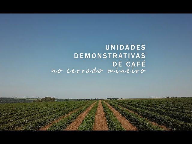Unidades Demonstrativas de café no Cerrado Mineiro