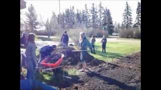 Stettler Community Gardens 2012