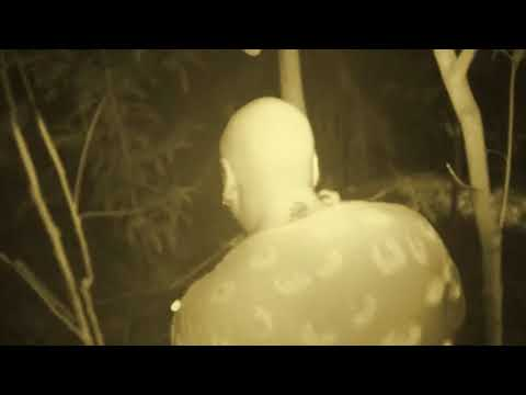 Ghost Watch: Dairy Farm Ghost Investigation