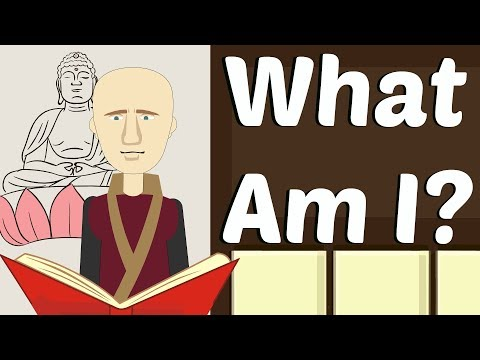 What am I (Wise Shorts Ep. #5) - SelfHelpRobot