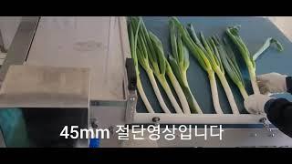 대파절단기 45mm 절단영상(그린텍쿼드) Green o…