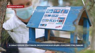 В Севастополе стартовала экологическая акция «Покорми птиц зимой»