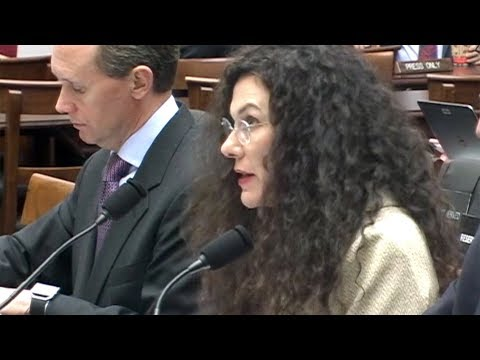 Erika Lietzan - House of Representatives Judiciary Committee, 7/27/17