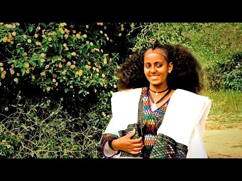 Alemayehu Hafte - laza' welela  / New Ethiopian Tigrigna Raya Music (Official Video)