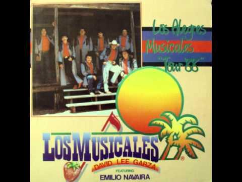 Pobrecito De Mi Corazon - David Lee Garza y Los Musicales