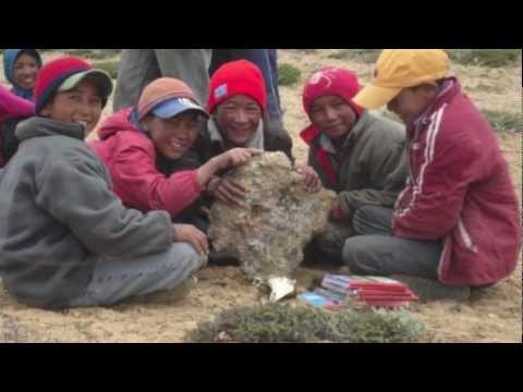 Snow Leopard Trust - Inspiring Tomorrow's Conservation Leaders