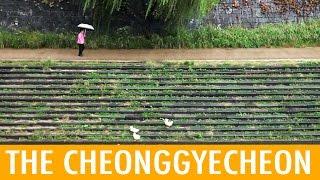 11 Things to do in Cheonggyecheon (KWOW #169)