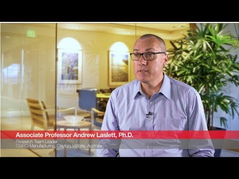 Thermo Fisher Scientific Stem Cell Antibodies