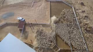 """""""Bucki"""" sheep farm, Henty NSW Australia drone video"""