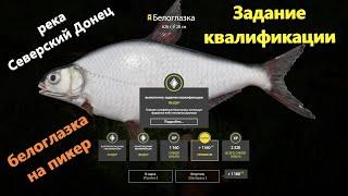 Русская рыбалка 4 река Северский Донец Белоглазка Задание квалификации фидер 3 3