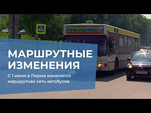 С 1 июня в Перми изменится маршрутная сеть автобусов