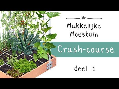 makkelijke moestuin crash course - deel 1: de basis - youtube