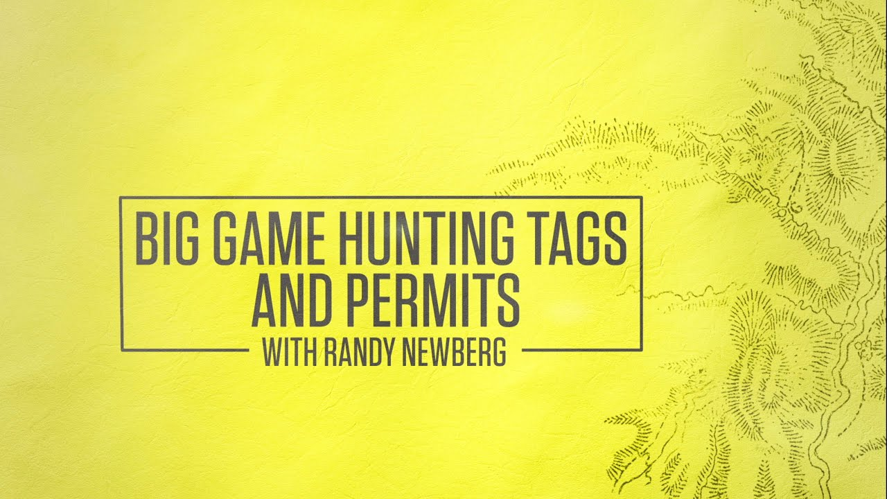 Big Game Hunting Tags And Permits With Randy Newberg - YouTube