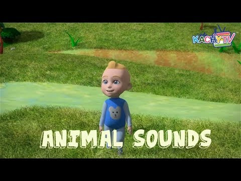 Animal Sounds Song for Kids   Learn Animals Name and Sound   Nursery Rhymes for Kids
