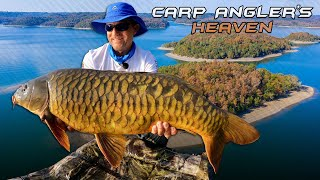 Gábor Döme - Wildwater Adventures part 39. - Carp Anglers' Heaven